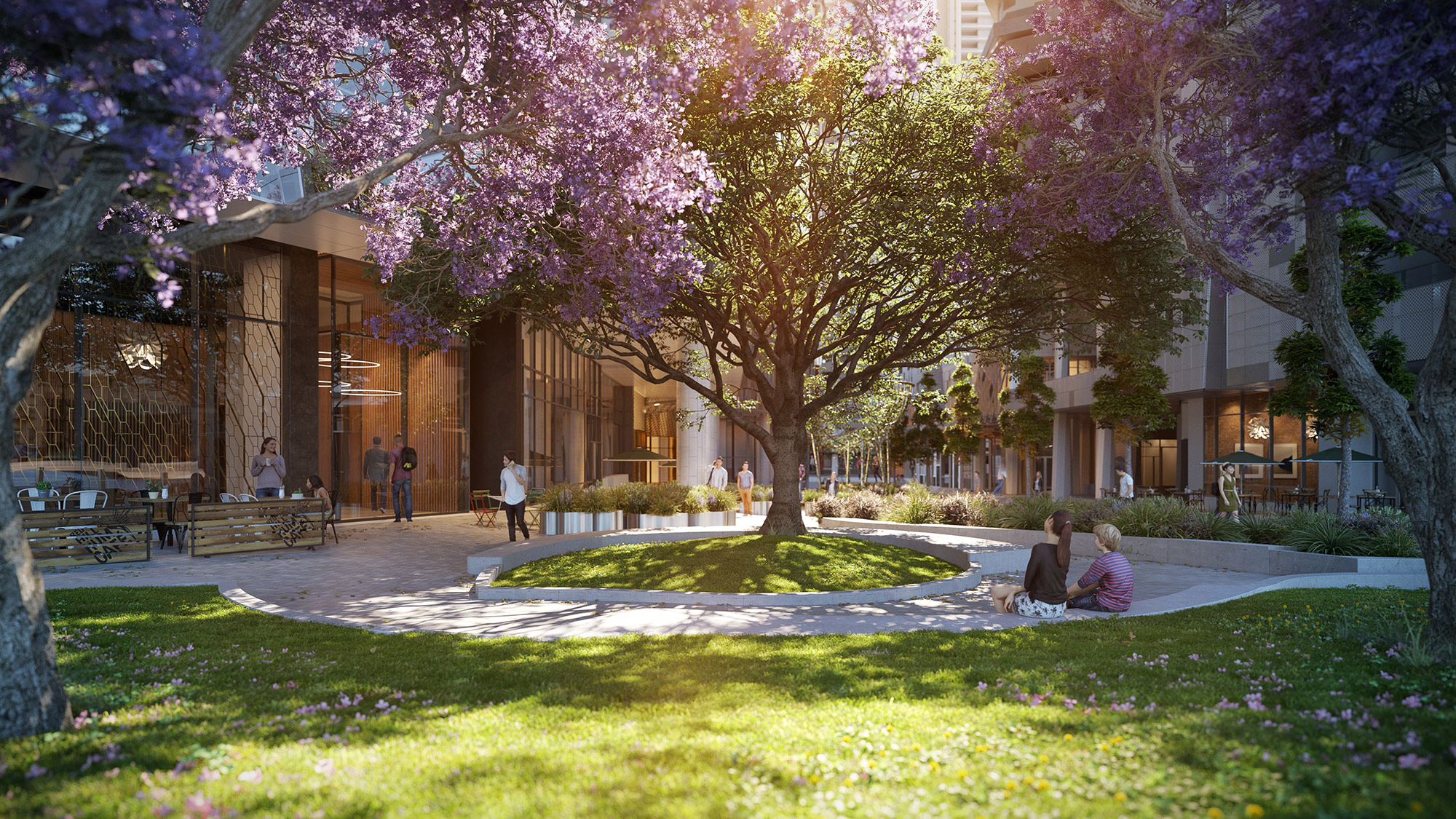West Side Place Park Release Grass and Jacaranda Trees